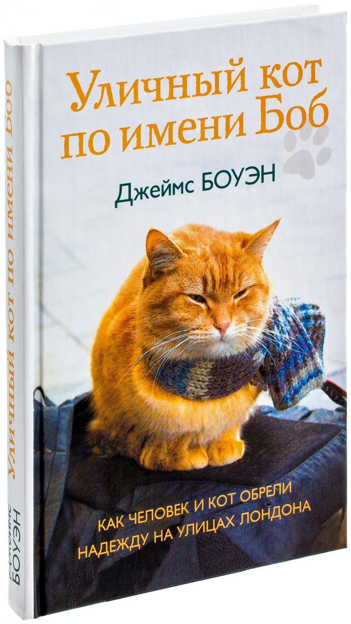 Уличный кот по имени Боб. Как человек и кот обрели надежду на улицах Лондона — Джеймс Боуэн