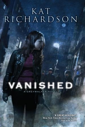 Изображение к книге Vanished