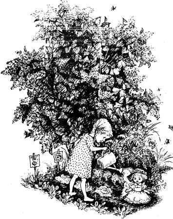 Изображение к книге Мирабэль
