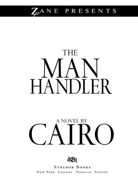Изображение к книге The Man Handler