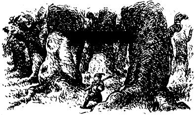 Изображение к книге Мальчик Чокчо