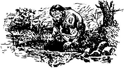 Изображение к книге Пустая голова