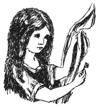 Изображение к книге Алиса под землёй