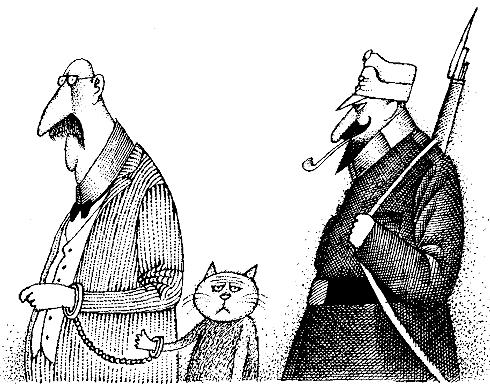 Изображение к книге Рассказы и фельетоны