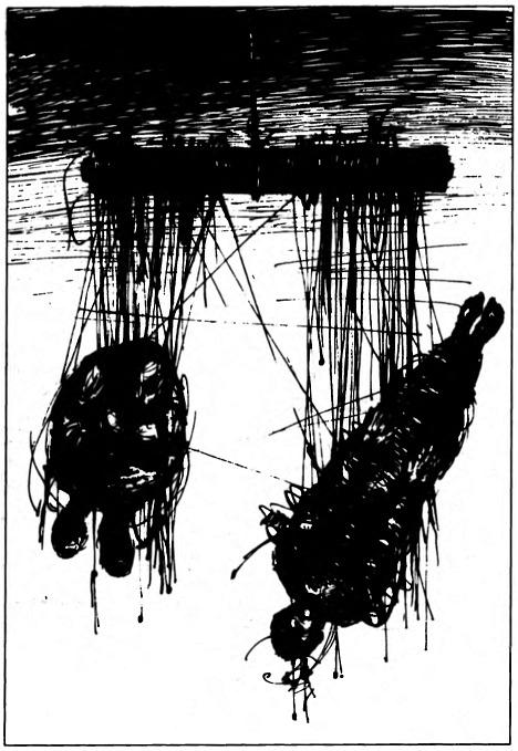 Изображение к книге Лёгкий Выход
