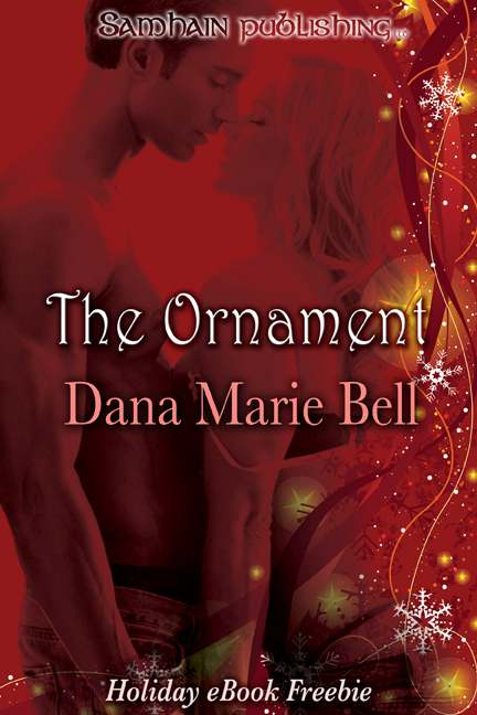 обложка книги The Ornament: Adrian and Sheri