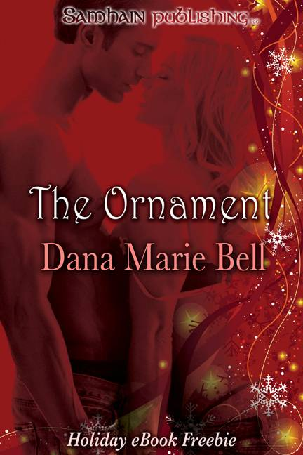 обложка книги The Ornament: Max and Emma