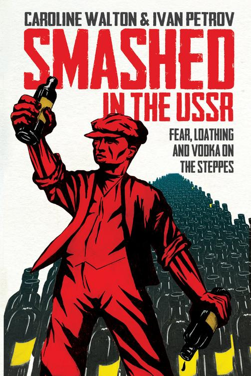 обложка книги Smashed in the USSR
