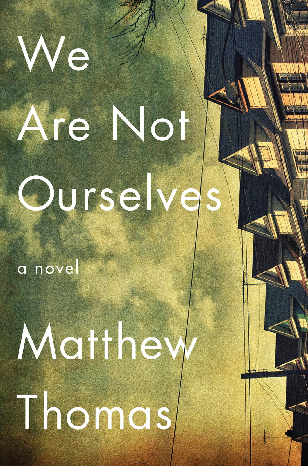 обложка книги We Are Not Ourselves