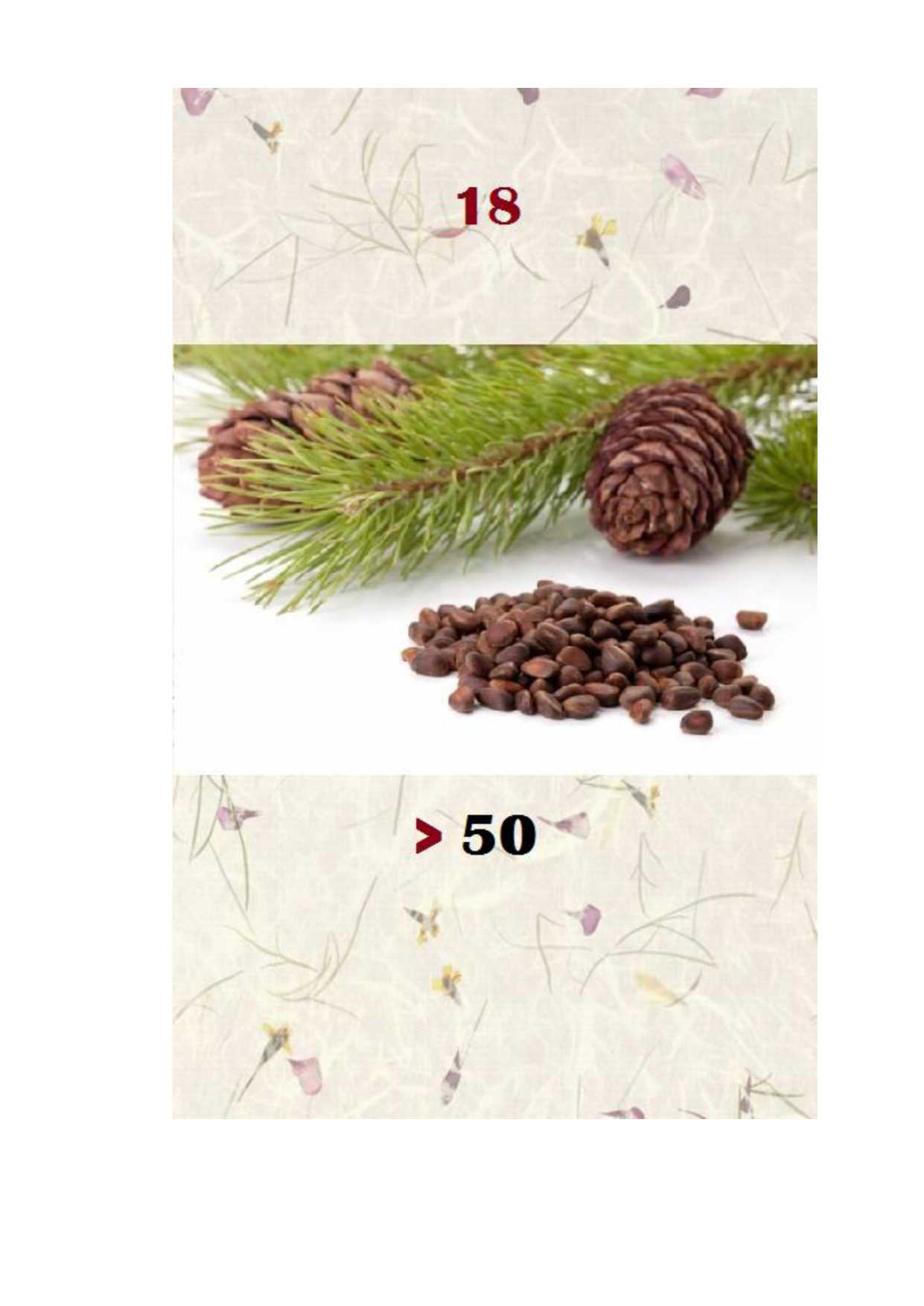 мг похудела редуксин 15-1