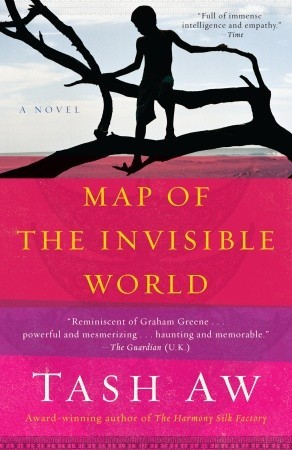 обложка книги Map of the Invisible World