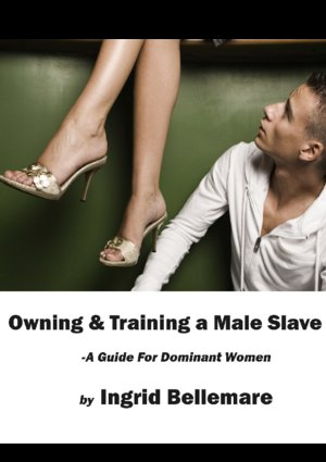 обложка книги Owning and Training a Male Slave