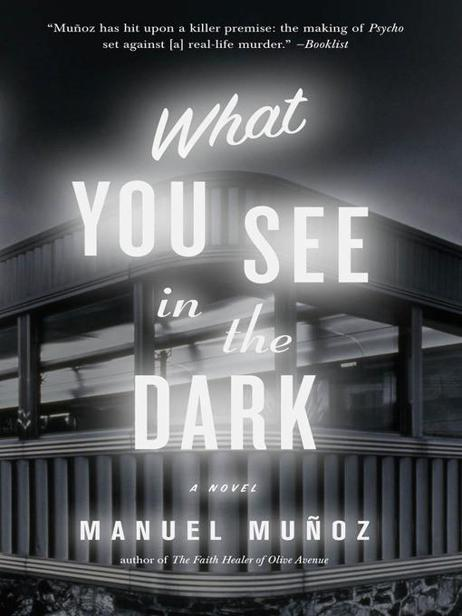 обложка книги What You See in the Dark