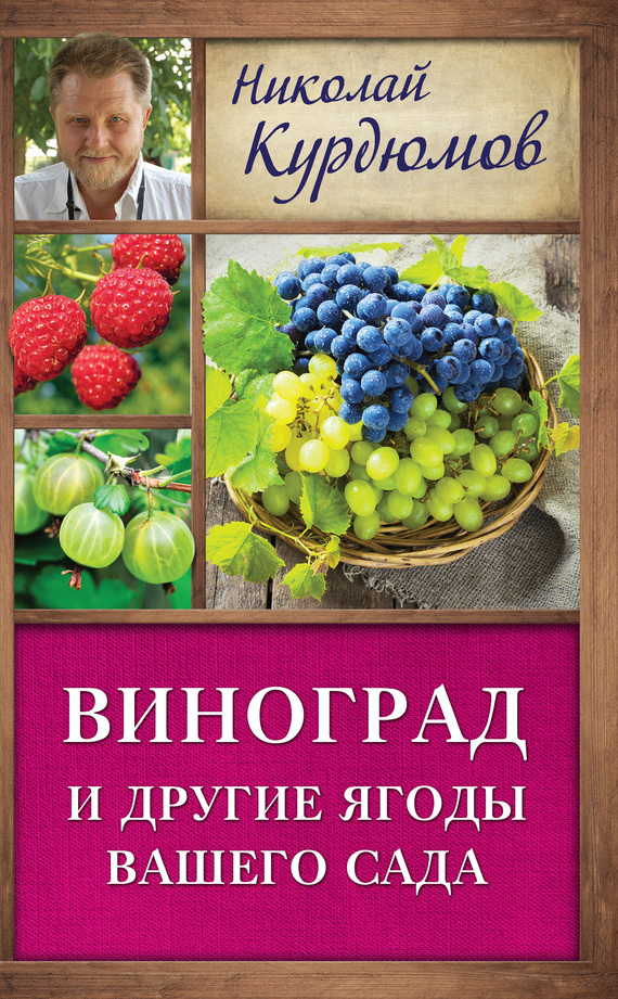 Скачать книгу про виноград
