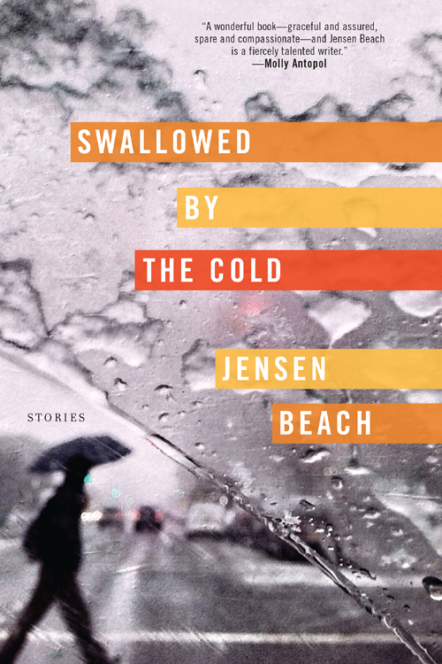 обложка книги Swallowed by the Cold: Stories