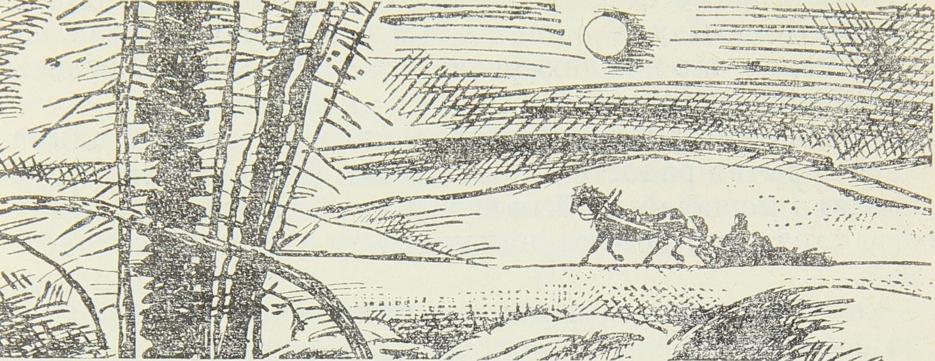 Изображение к книге Арктический экзамен