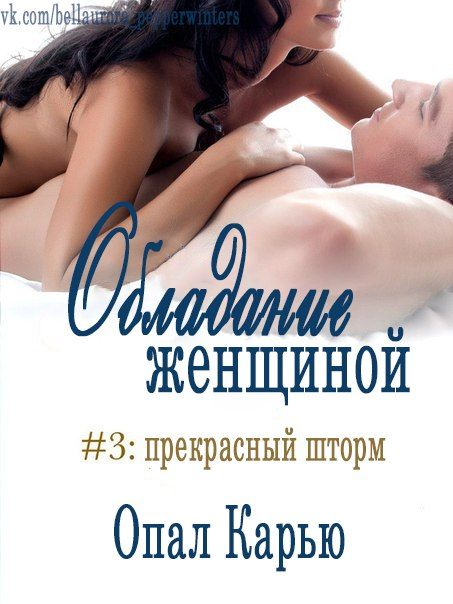 обложка книги Perfect Storm (His to Possess#3)