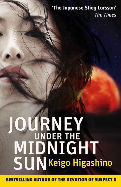 обложка книги Journey Under the Midnight Sun