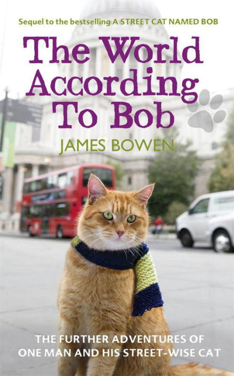 обложка книги The World According to Bob