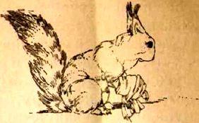 Изображение к книге Андрейка на плоту