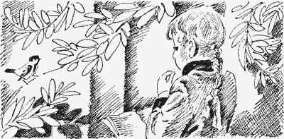 Изображение к книге Московка