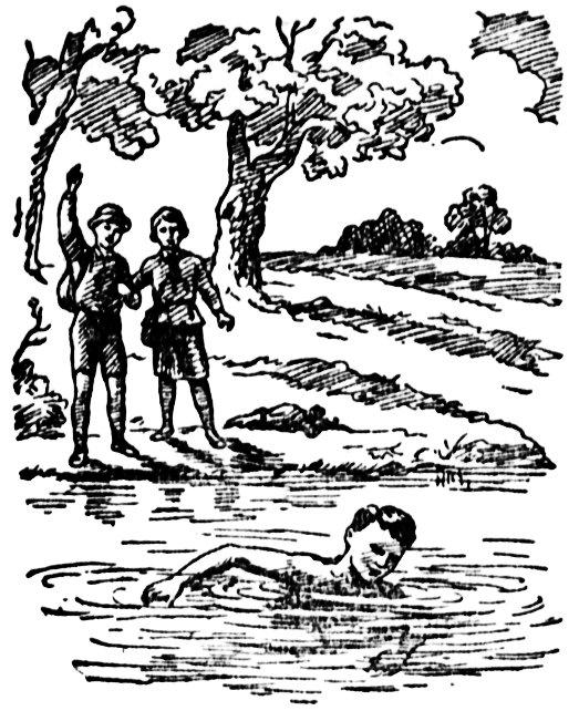 Изображение к книге Тайна Изумрудного острова