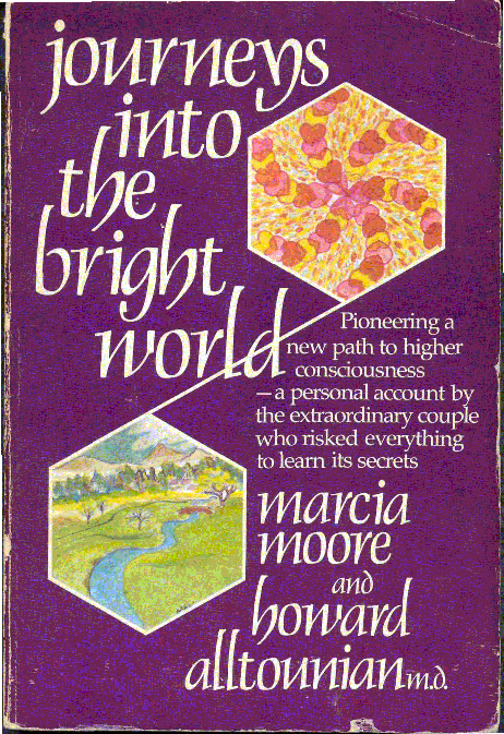 обложка книги Journeys into the bright world