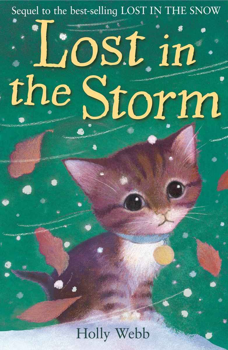 обложка книги Lost in the Storm