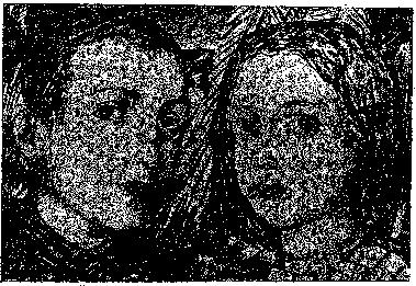 Изображение к книге Аойя