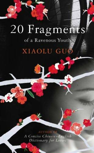 обложка книги 20 Fragments Of A Ravenous Youth