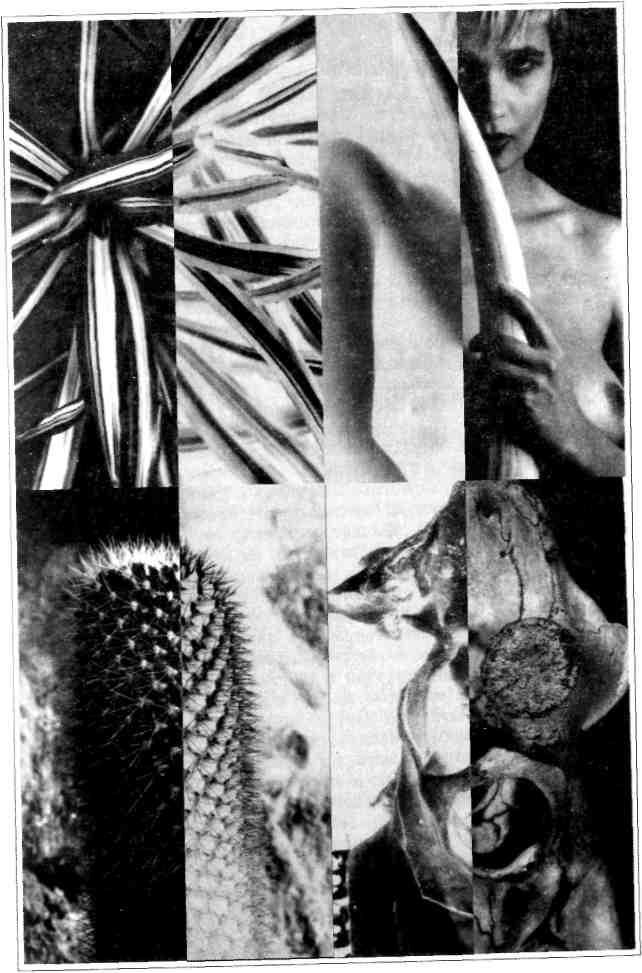 Изображение к книге Антология современной уральской прозы