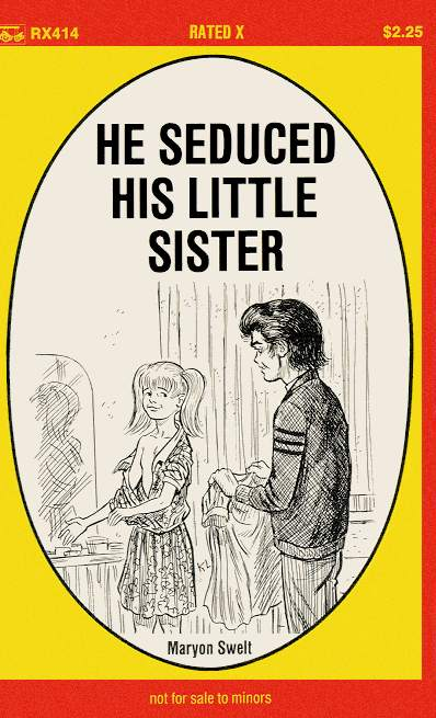 обложка книги He seduced his little sister